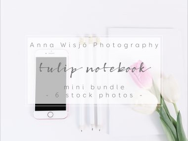 Tulip Notebook Stock Collection by Anna Wisjo Stock