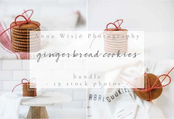 Gingerbread Cookies Stock Bundle | Anna Wisjo Stock