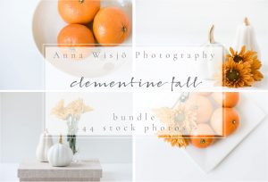 Clementine Fall Stock Bundle